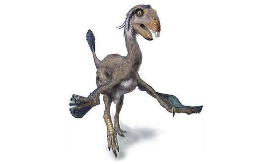 kuebek Du fin fond de la blogosphère, le lointain cri d'un dinosaure