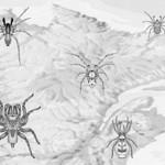 montr al soyez attentifs l araign e jaune chiracanthium mildei. Black Bedroom Furniture Sets. Home Design Ideas