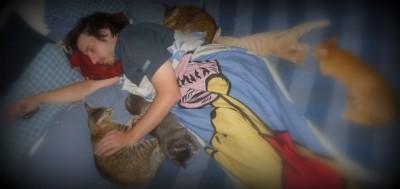 Dernière sieste de Carl en compagnie de notre clan félin