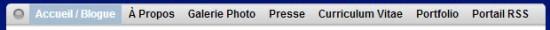 Ma barre de navigation est sobre... mais en guise de sous-section, chaque hyperlien mène en définitive à un autre blogue.